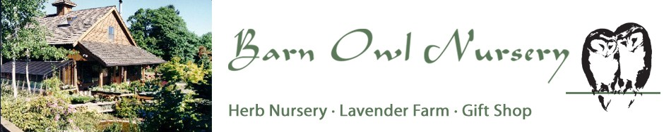 Barn Owl Nursery